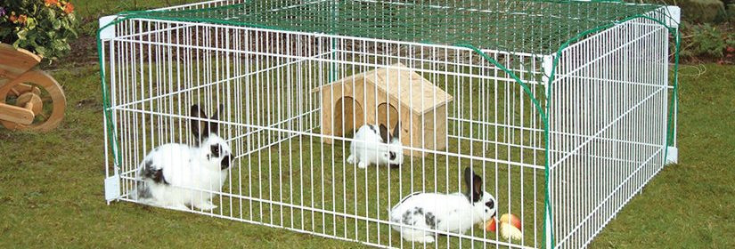 cage a lapin exterieure